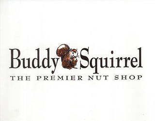Branding and Marketing of Buddy Squirrel logo