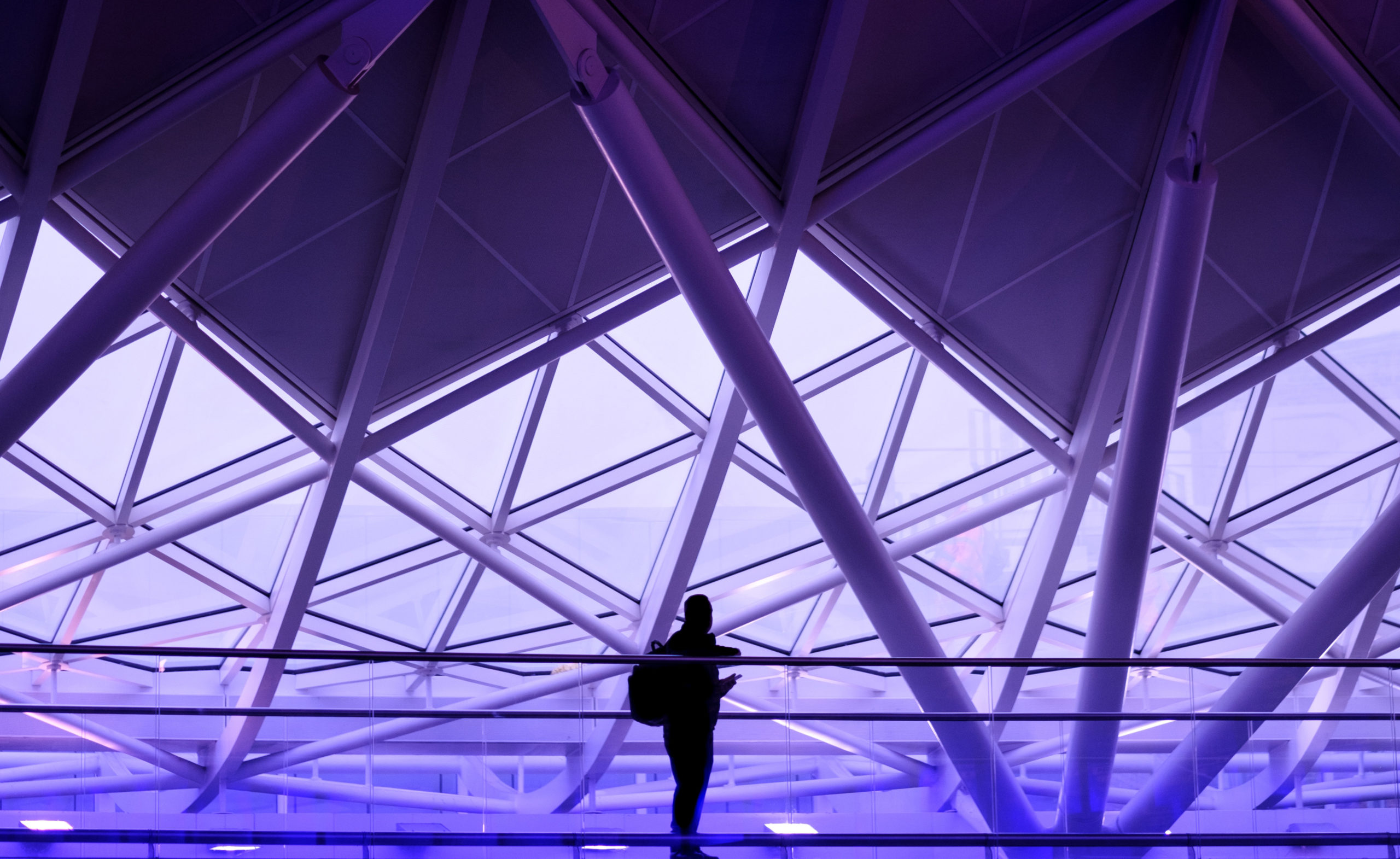 Person standing in purple room with windows